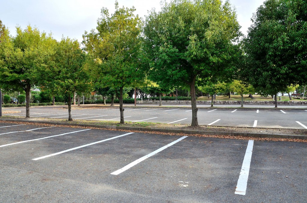 Large concrete parking lot with freshly painted white parking strips